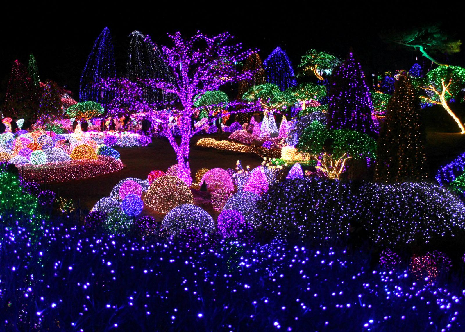 Những mẫu đèn trang trí cây xanh tạo hiệu ứng đẹp