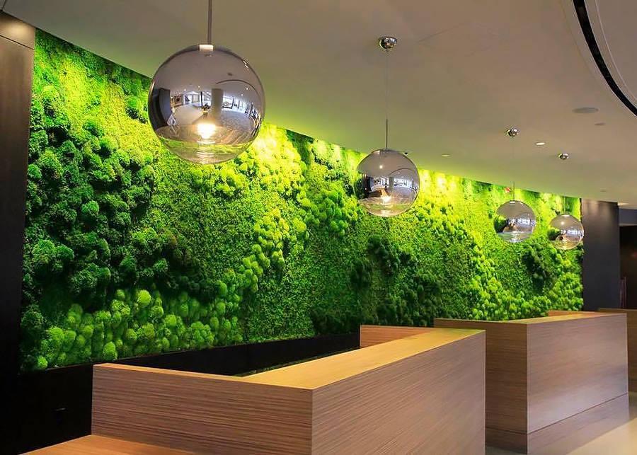 Những lưu ý cần biết khi bố trí đèn trang trí cho không gian cây xanh nội thất